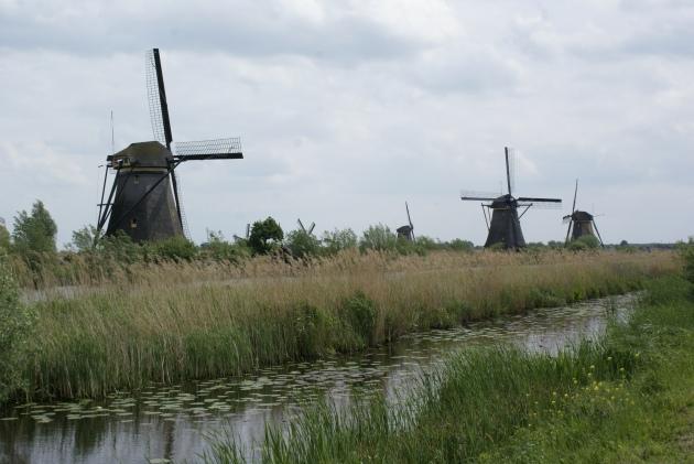 Les moulins de Kinderdijk - © J.L.G.