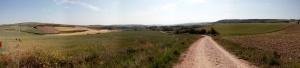 Quelque part entre Viloria de la Rioja et Villafranca Montes de Oca